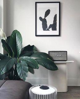 modern furniture calgary alberta house designer today