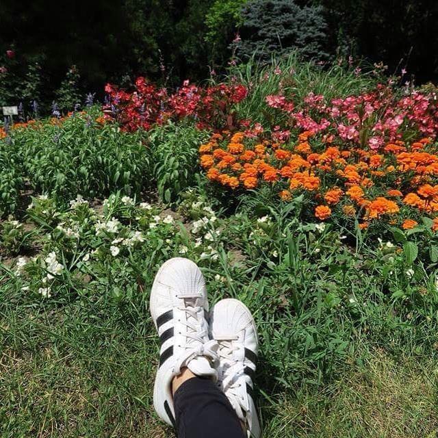 Between flowers 🌸 🌸 🌸 #flowers #flowerstagram #colorful  #sunnyday #summer #botanicgarden #garden #adidas #superstar #author #amazingplaces #wanderlust #travel #countryside #thisishungary #shoes #instadaily #like #igers #travelgirl #instaflower #lovely #me #instanature #allnatureshots