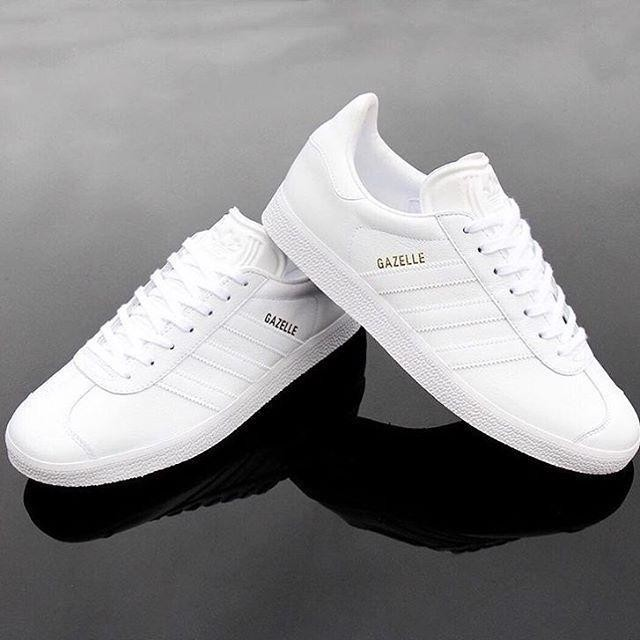 white gazelles