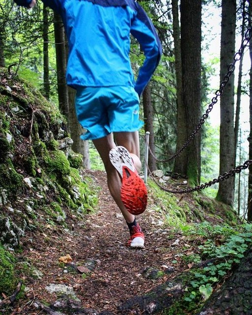 8563bd0163 SALOMON : Running shoes and clothing, trail running, hiking, ski and ...